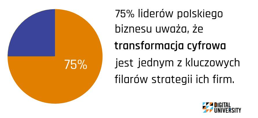 cyfrowa transformacja w polsce
